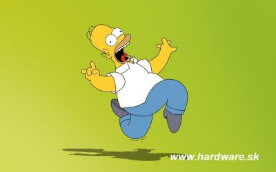 http://www.hardware.sk/materials/user17/thumbs/homersimpson.jpg